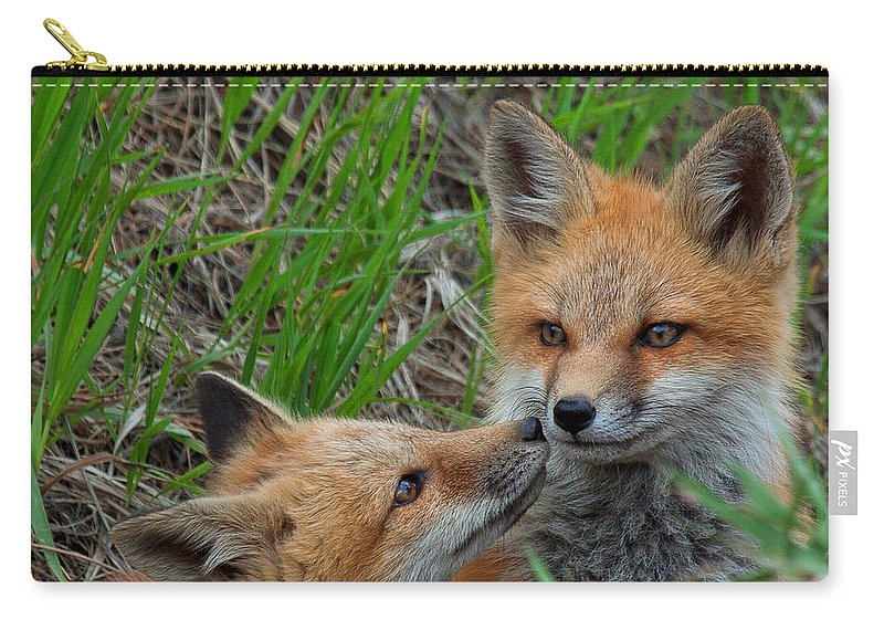 Fox Carry-all Pouch featuring the photograph Young Love by Jim Garrison