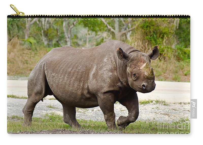 Animal Carry-all Pouch featuring the photograph Young Rhinoceros by Les Palenik