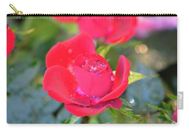 Rose Carry-all Pouch featuring the photograph Young Rose Of November by Riad Belhimer