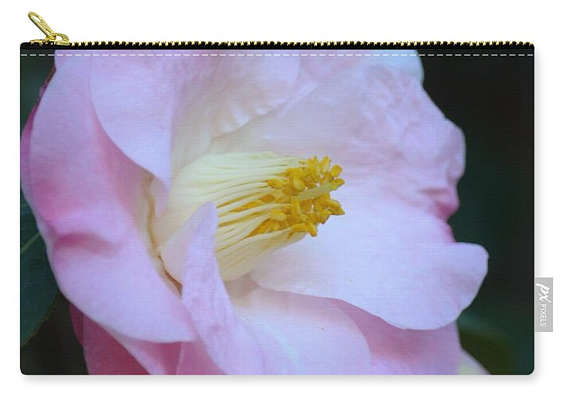 Youthful Camelia Carry-all Pouch featuring the photograph Youthful Camelia by Maria Urso