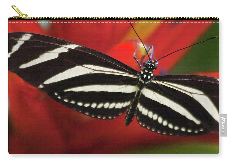 Mariposa Carry-all Pouch featuring the photograph Zebra Longwing Butterfly by Heiko Koehrer-Wagner