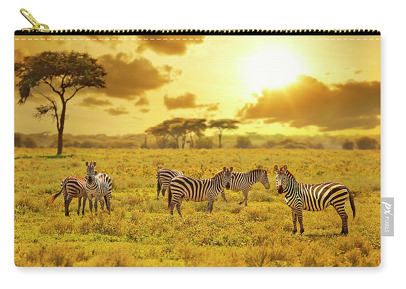Kenya Carry-all Pouch featuring the photograph Zebra by Ugurhan