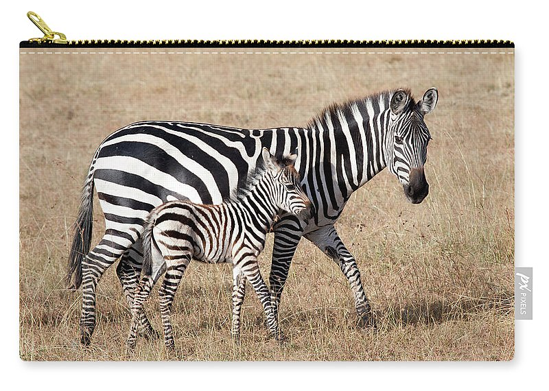 Kenya Carry-all Pouch featuring the photograph Zebra With Young Foal, Masai Mara by Angelika