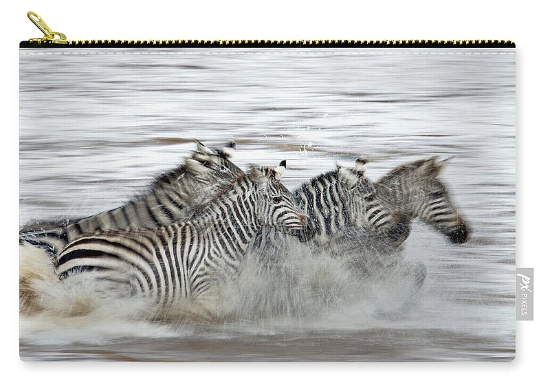 Plains Zebra Carry-all Pouch featuring the photograph Zebras Crossing The Mara River by Aditya Singh
