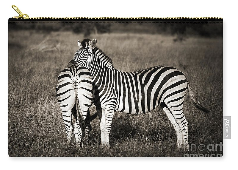 Zebra Carry-all Pouch featuring the photograph Zebras by Delphimages Photo Creations