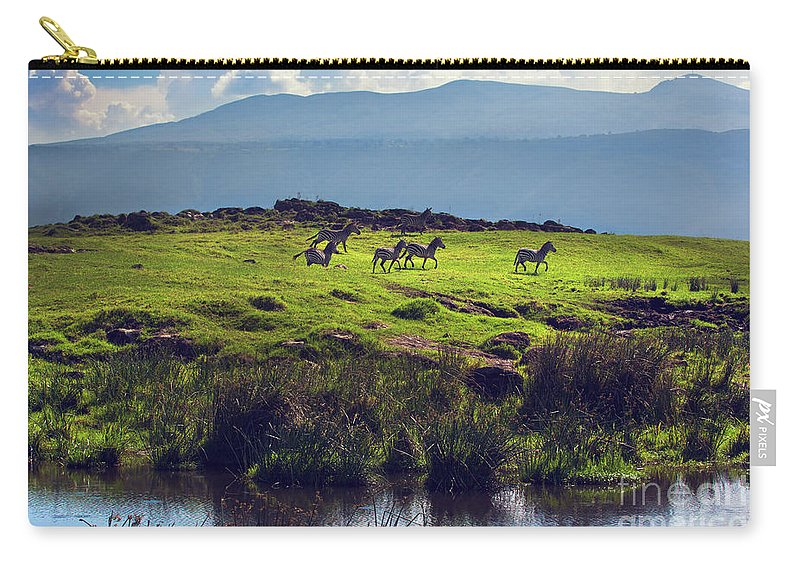 Zebra Carry-all Pouch featuring the photograph Zebras On Green Grassy Hill. Ngorongoro. Tanzania by Michal Bednarek