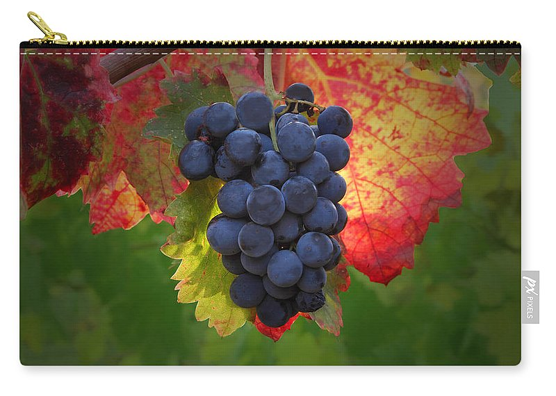 Wine Carry-all Pouch featuring the photograph Zinfandel Grapes by Susan Rovira