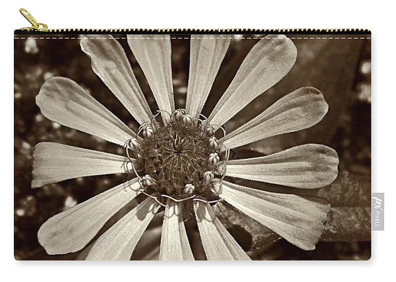 Zinnia Carry-all Pouch featuring the photograph Zinnia Monochrome by Chris Berry