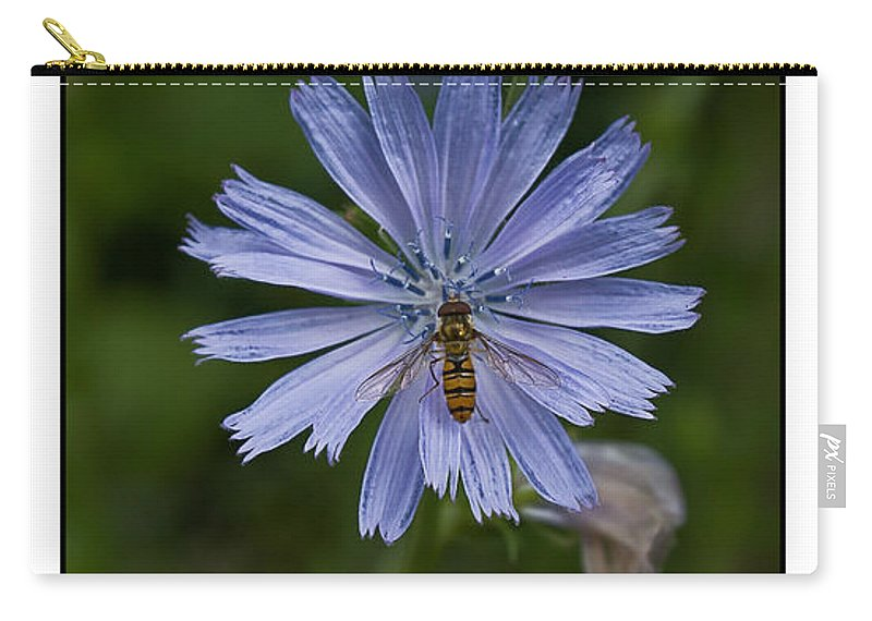 Periwinkle Carry-all Pouch featuring the photograph Spring Flower And Hoverfly by Beverly Cash