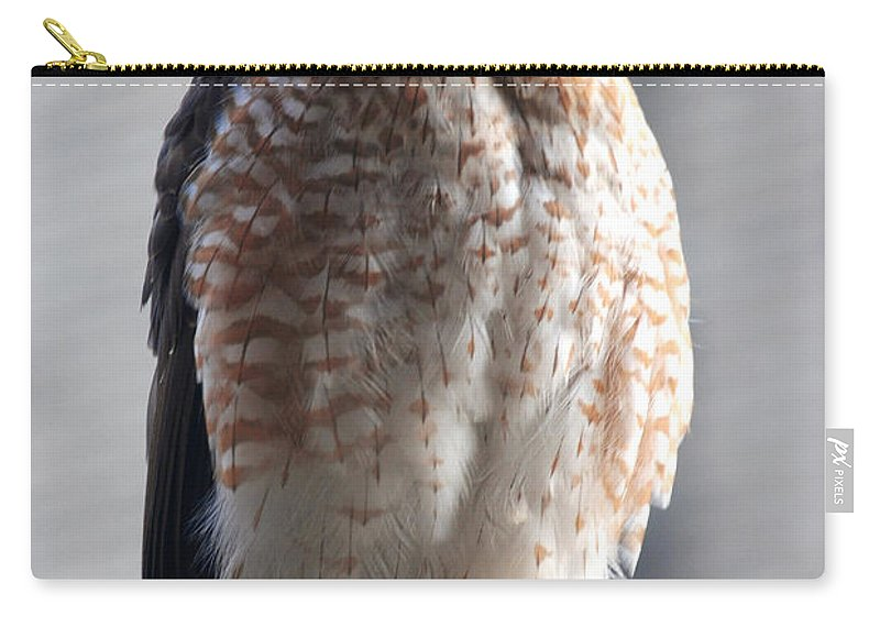 Carry-all Pouch featuring the photograph 06 Falcon by Michael Frank Jr