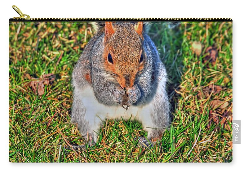 Carry-all Pouch featuring the photograph 06 Grey Squirrel Sciurus Carolinensis Series by Michael Frank Jr