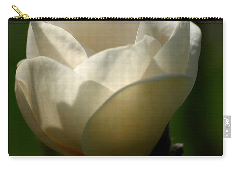 Floral Carry-all Pouch featuring the photograph A New Day by Living Color Photography Lorraine Lynch