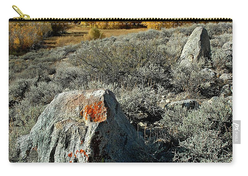 Aspens Carry-all Pouch featuring the photograph Aspens by Dave Mills