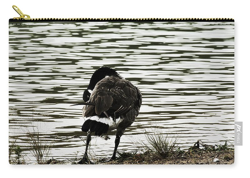 Canadian Goose Carry-all Pouch featuring the photograph At The Waters Edge by Douglas Barnard