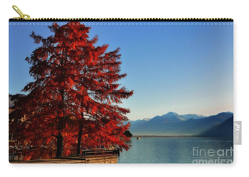 Tree Carry-all Pouch featuring the photograph Autumn Tree by Mats Silvan