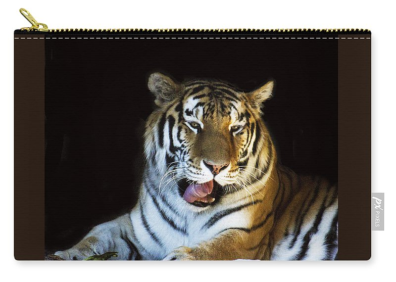 Animal Carry-all Pouch featuring the photograph Awaking Tiger by Suanne Forster