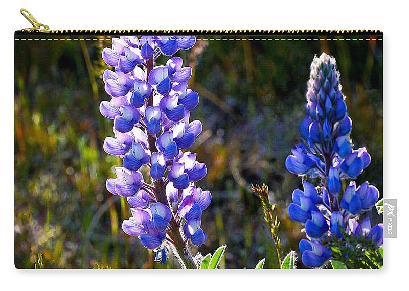 Flower Carry-all Pouch featuring the photograph Back Lit Lupine by Jean Noren