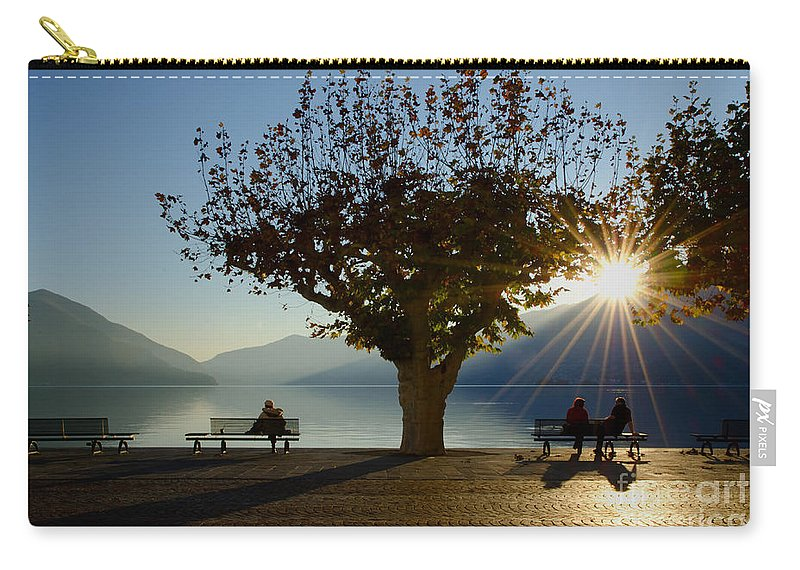 Bench Carry-all Pouch featuring the photograph Benches And Trees by Mats Silvan