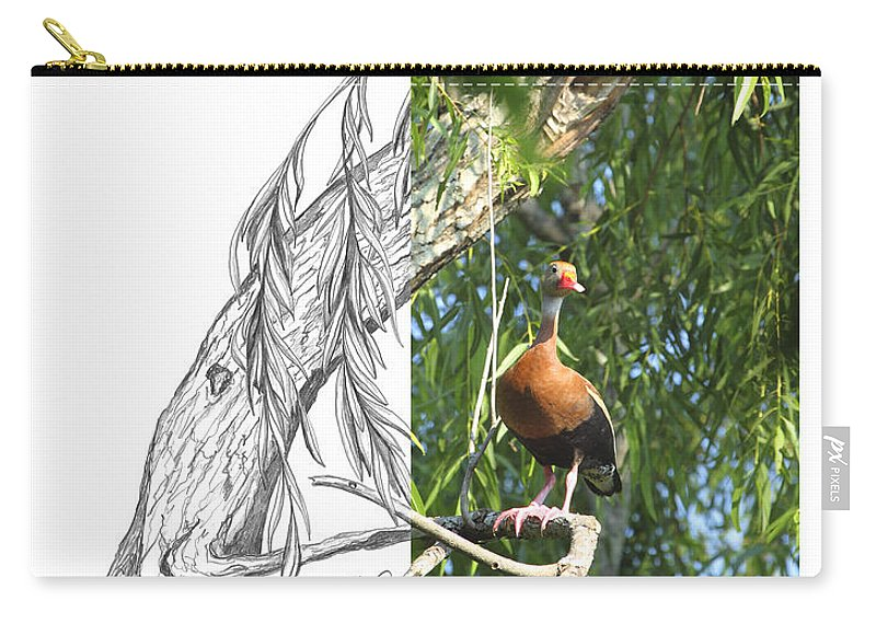 Black-bellied Whistling-duck Carry-all Pouch featuring the photograph Black-bellied Whistling-duck by Andrew McInnes