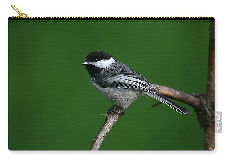 Alaska Carry-all Pouch featuring the photograph Blackcapped Chickadee by Doug Lloyd