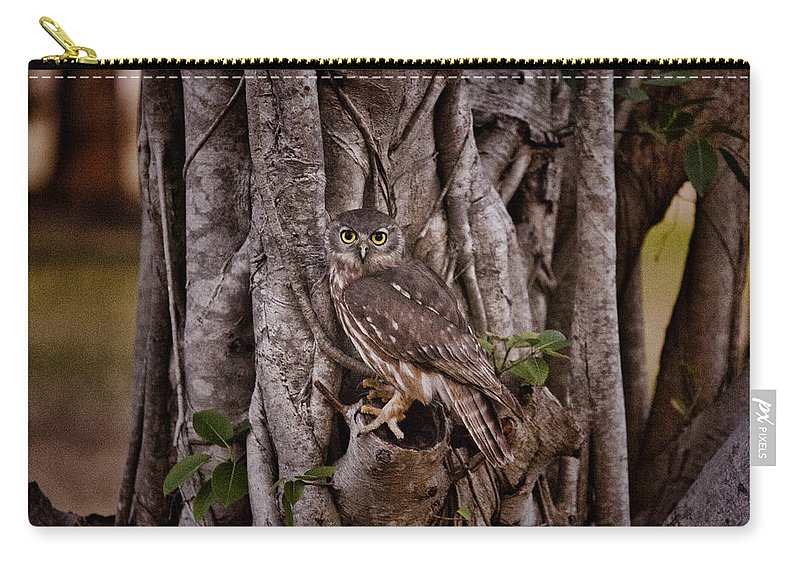 Barking Owl Carry-all Pouch featuring the photograph Blending In V3 by Douglas Barnard