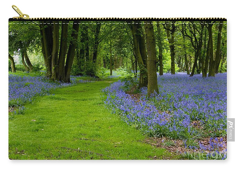 Bluebell Woods Carry-all Pouch featuring the photograph Bluebell Woods by Brian Roscorla