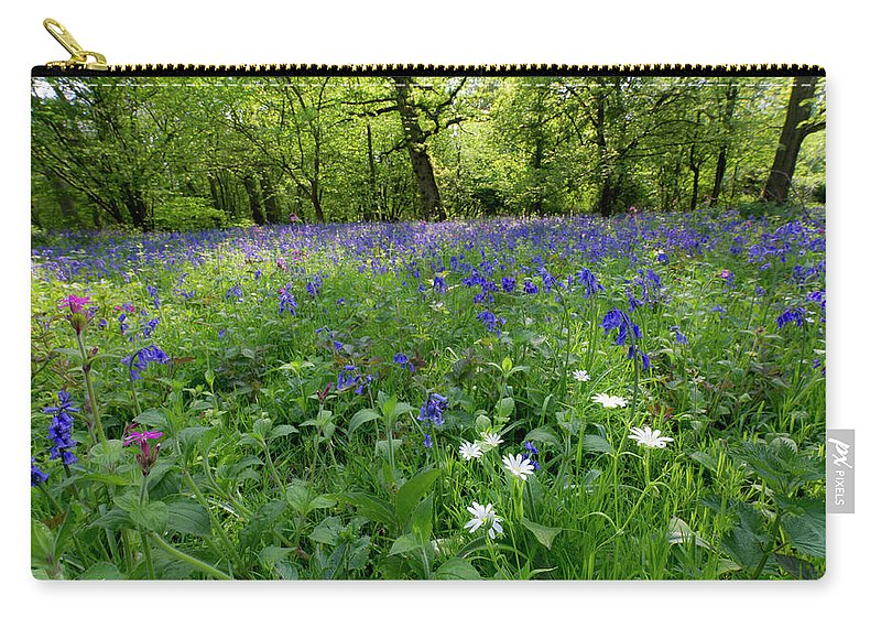 Bluebells Carry-all Pouch featuring the photograph Bluebell Woods by Gary Eason