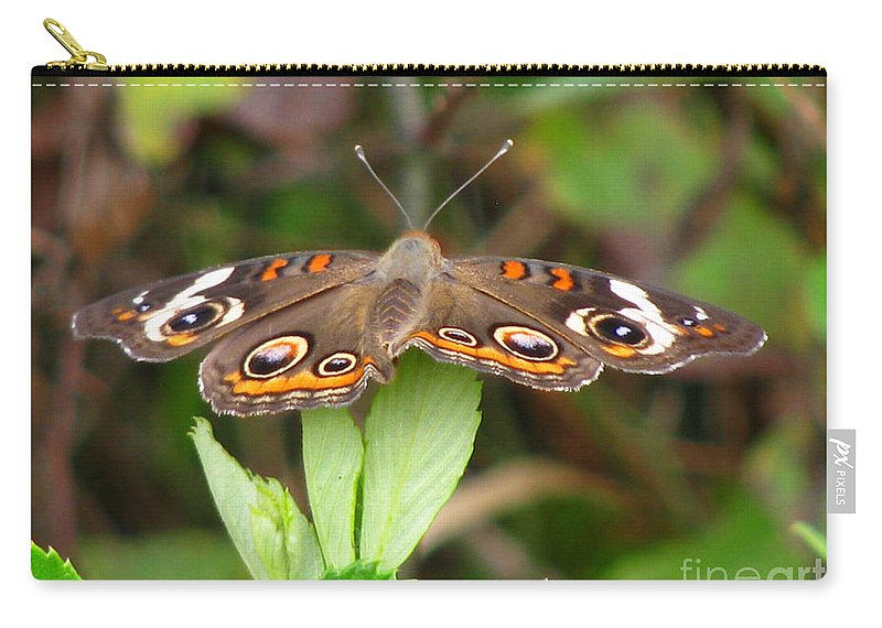 Insect Carry-all Pouch featuring the photograph Buckeye Butterfly by Donna Brown