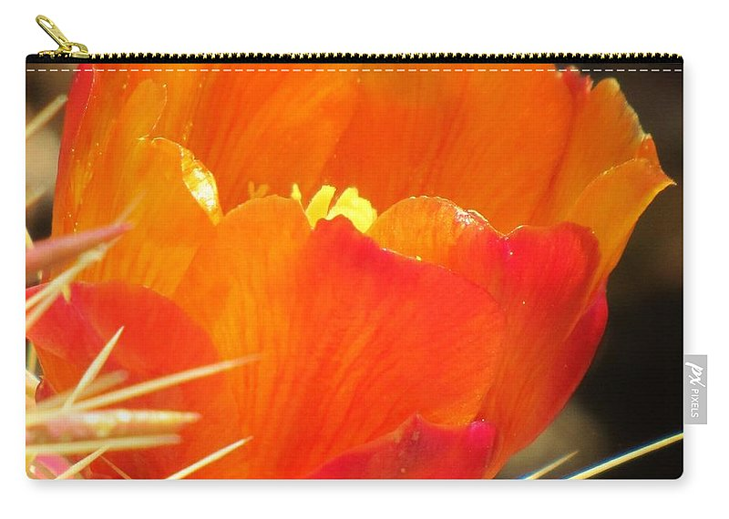 Cactus Flower Carry-all Pouch featuring the photograph Cactus Flower by Michelle Cassella