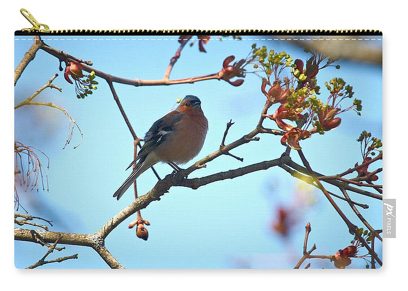 Isosuo Carry-all Pouch featuring the photograph Chaffinch by Jouko Lehto