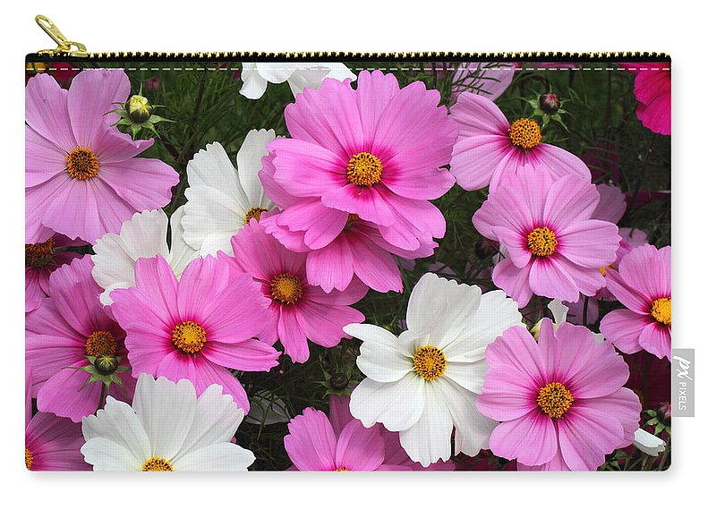 Doug Lloyd Carry-all Pouch featuring the photograph Cosmos by Doug Lloyd