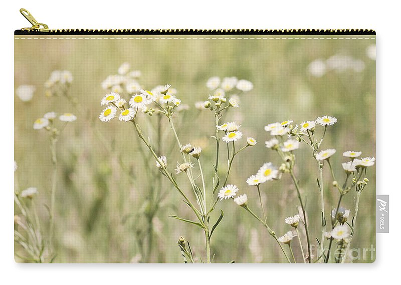 Flowers Carry-all Pouch featuring the photograph Daisies by Pam Holdsworth