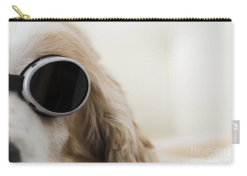 Dog Carry-all Pouch featuring the photograph Dog With Sunglasses by Mats Silvan