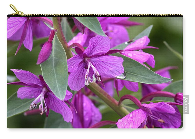 Doug Lloyd Carry-all Pouch featuring the photograph Dwarf Fireweed by Doug Lloyd
