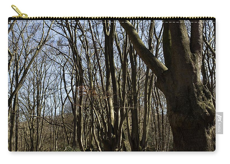 Epping Carry-all Pouch featuring the photograph Epping Forest by David Pyatt