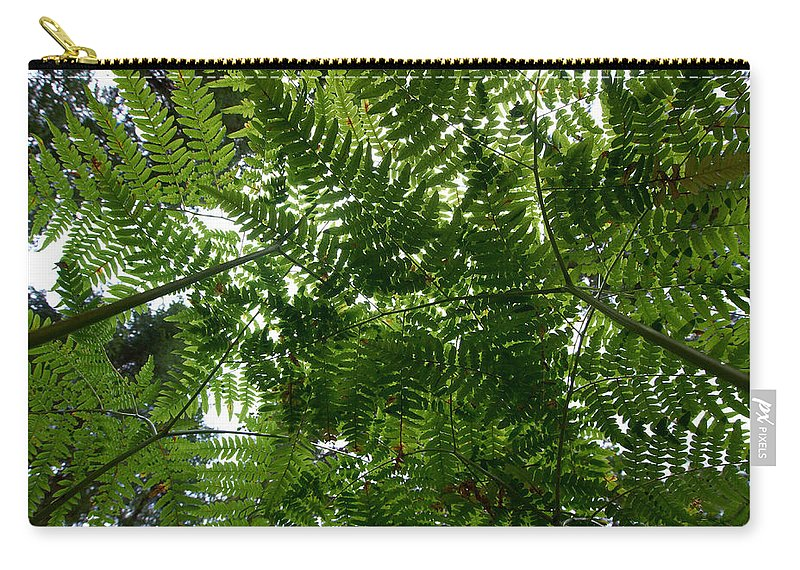 Lehtokukka Carry-all Pouch featuring the photograph Ferns by Jouko Lehto