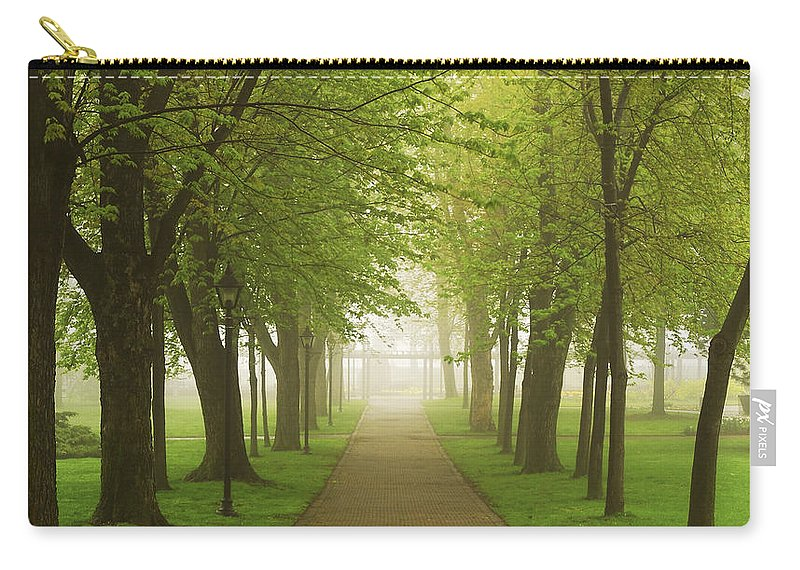 Fog Carry-all Pouch featuring the photograph Foggy Park by Elena Elisseeva