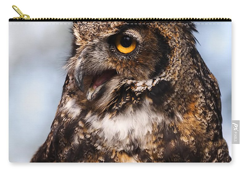 Doug Lloyd Carry-all Pouch featuring the photograph Great Horned Owl by Doug Lloyd