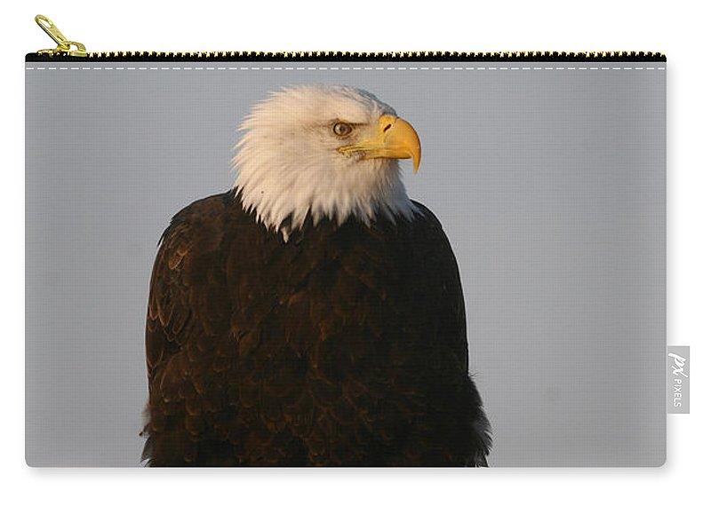 Doug Lloyd Carry-all Pouch featuring the photograph Grumpy by Doug Lloyd