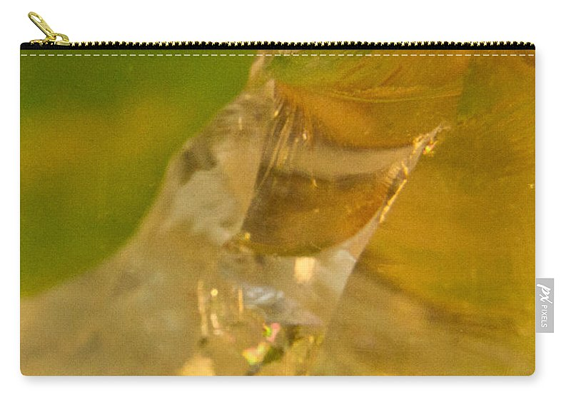 Wasp Carry-all Pouch featuring the photograph Halicid Bee 6 by Douglas Barnett