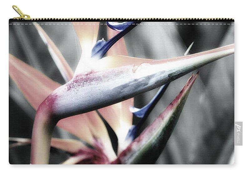 Kauai Carry-all Pouch featuring the photograph Kauai Paradise by Linda Dunn