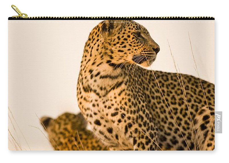 African Carry-all Pouch featuring the photograph Leopard Panthera Pardus, Arathusa by Stuart Westmorland