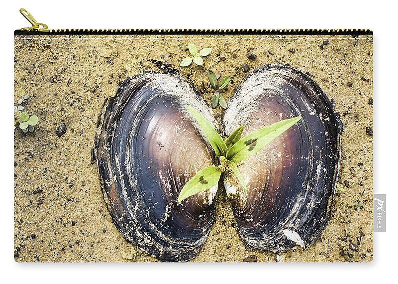Freshwater Mussels Shell Carry-all Pouch featuring the photograph Life And Death by Douglas Barnard