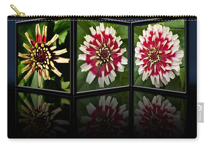 Zinnia Carry-all Pouch featuring the photograph Life Of A Zinnia by Steve Purnell