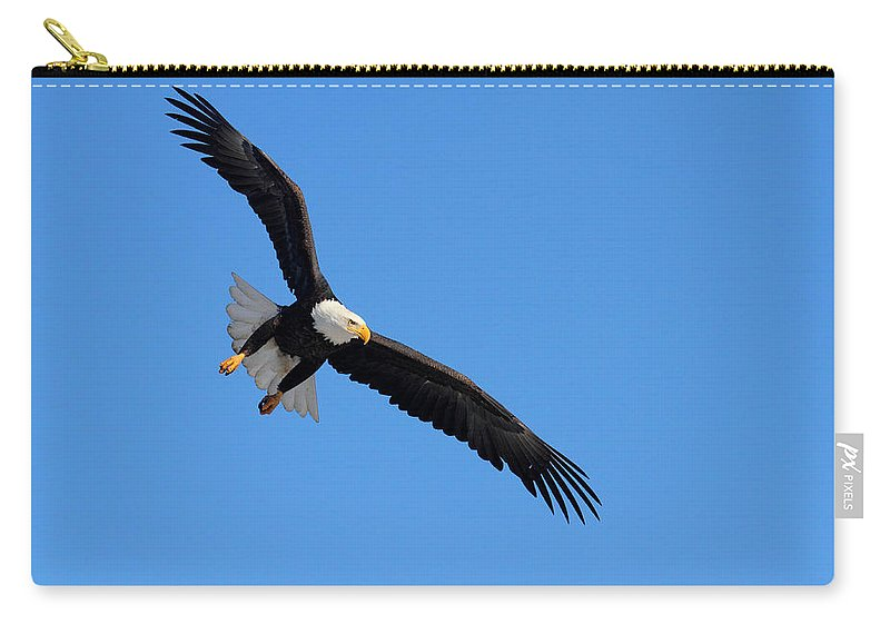 Doug Lloyd Carry-all Pouch featuring the photograph Locked On by Doug Lloyd