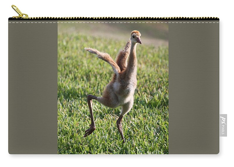 Sandhill Crane Carry-all Pouch featuring the photograph Look At Me by Carol Groenen