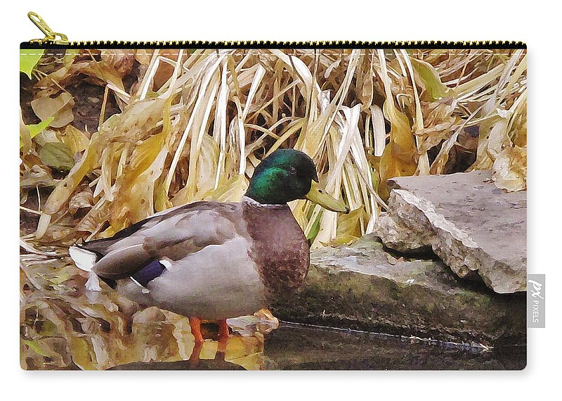 Autumn Carry-all Pouch featuring the photograph Mallard by Ian MacDonald