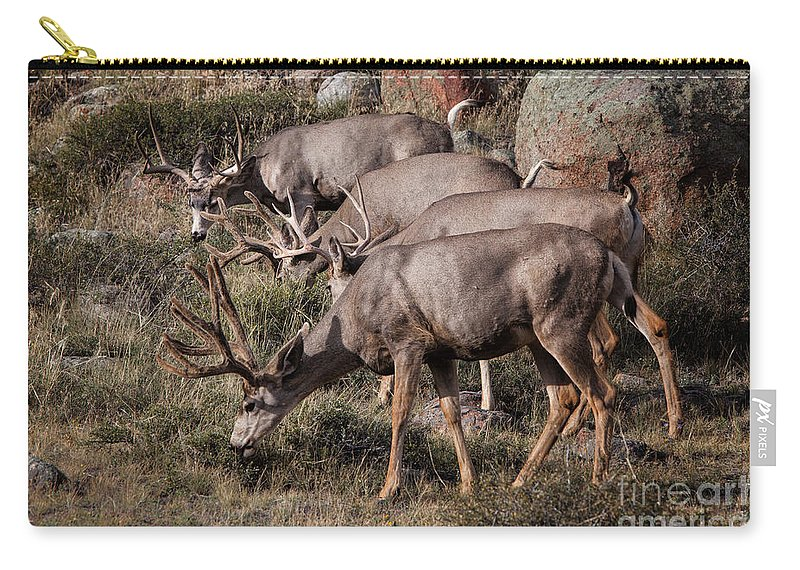 2012 Carry-all Pouch featuring the photograph Mule Deer Bucks by Ronald Lutz