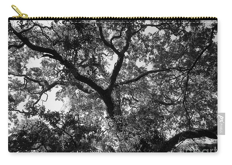 Trees Carry-all Pouch featuring the photograph Nature's Network by Maria Bonnier-Perez
