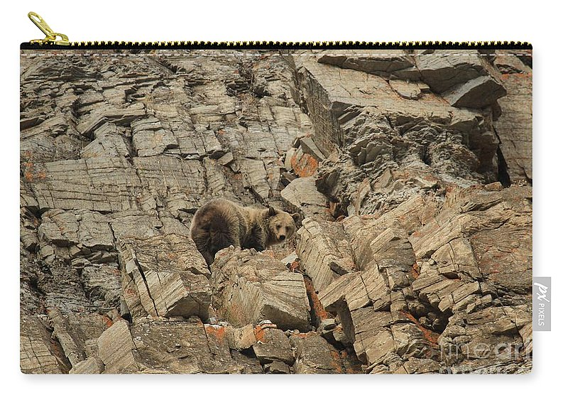 Grizzly Bear Carry-all Pouch featuring the photograph On The Edge Of Glory by Adam Jewell